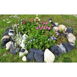 Камък от шунгит за градина(ландшафт)