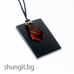 Медальон от шунгит с естествен балтийски кехлибар